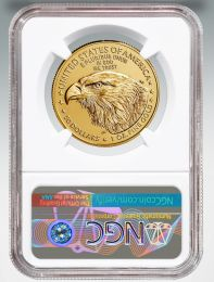 2015 American Eagle Gold Coin MS 69