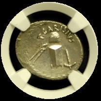 Denarius of T. Carisius - Obverse